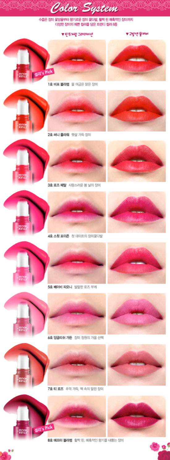 Etude House Rosy Tint Lips Fall Winter 2013